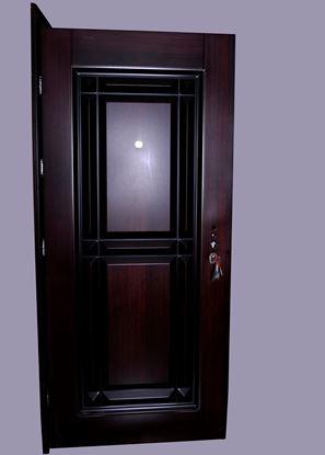 Picture of Steel Door